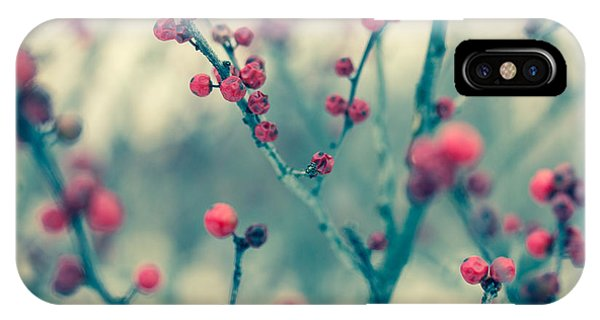 Blue Berry iPhone Case - Winter Berries by Shane Holsclaw