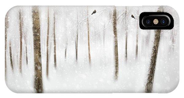 Birch Tree iPhone Case - Winter Birches by Gustav Davidsson