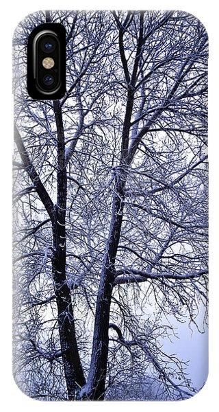 Winter Tree In Blue Fog IPhone Case