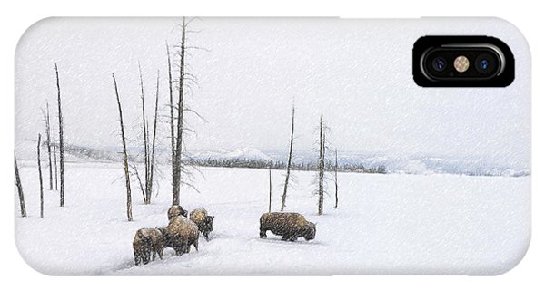 Winter Buffalo IPhone Case