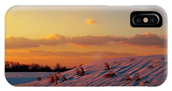 Winter Color IPhone Case