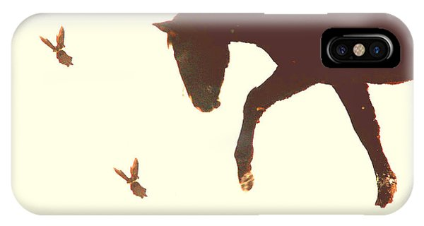 Winter Colt With Two Magpies IPhone Case