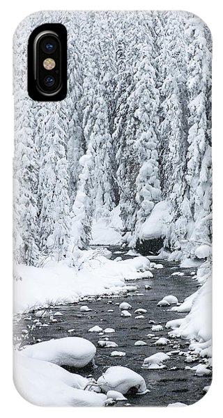 Winter Creek IPhone Case