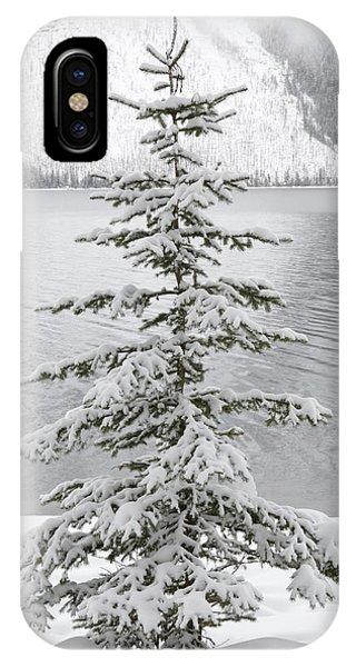 Winter Decor IPhone Case