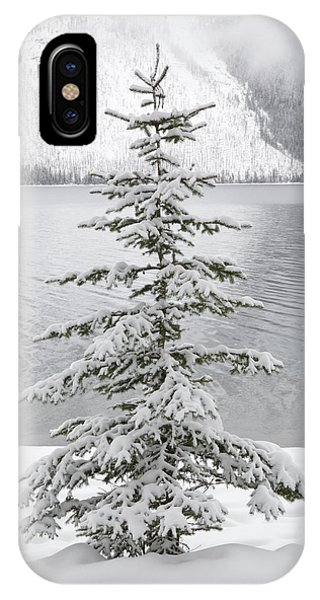 Winter Decor IPhone Case