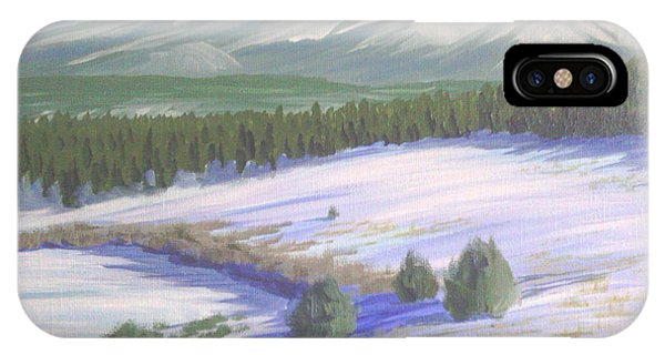 Winter Eagle At Mormon Lake IPhone Case