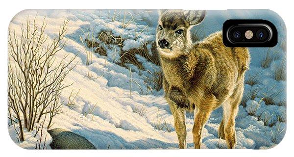 Mule Deer iPhone Case - Winter Fawn - Mule Deer by Paul Krapf