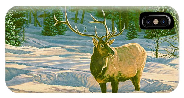Bull iPhone Case - Winter Forage - Elk by Paul Krapf