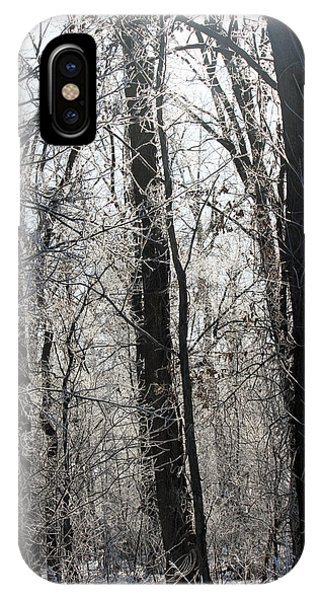 IPhone Case featuring the photograph Winter Forest by Jackson Pearson