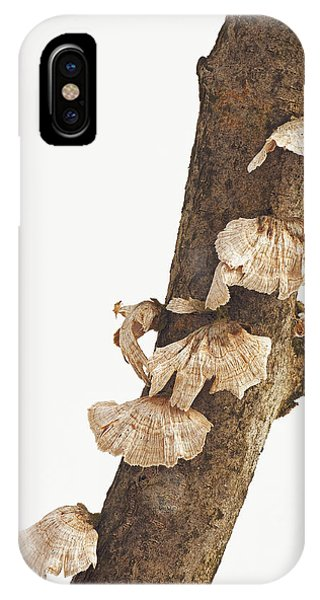 Winter Fungi IPhone Case