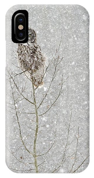 Winter Ghost IPhone Case