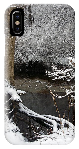 Winter In Rotary Park 2 IPhone Case
