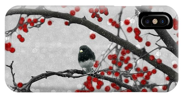 IPhone Case featuring the photograph Winter Junco by Jackson Pearson