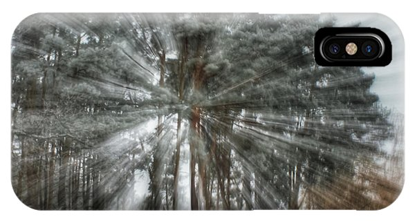 Winter Light In A Forest IPhone Case