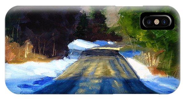 Earthy iPhone Case - Winter Light by Nancy Merkle