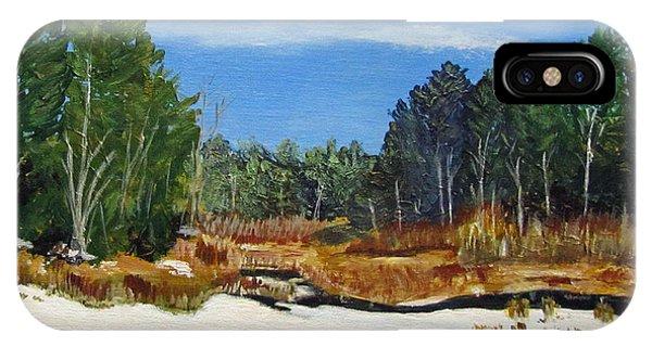 Winter Marsh In Hooksett IPhone Case