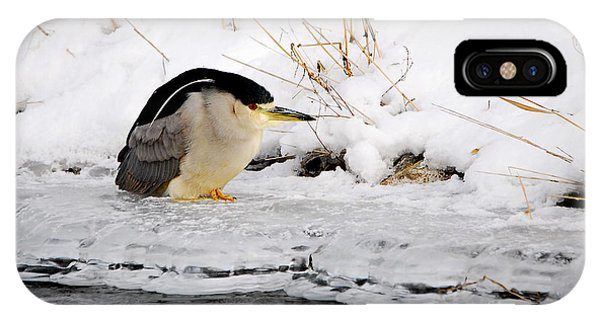 Winter Night Heron IPhone Case