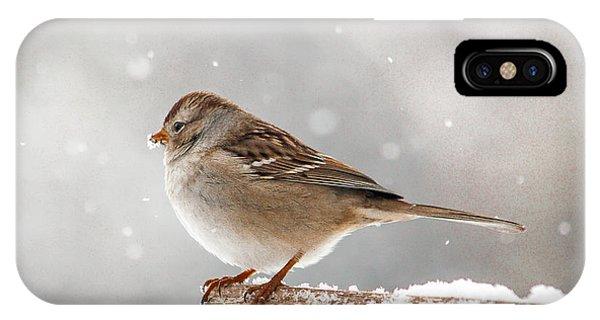Winter Perch IPhone Case