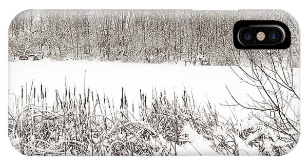Winter Pond IPhone Case