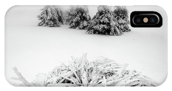 Fir Trees iPhone Case - Winter Scenery by Daniel ?e?icha