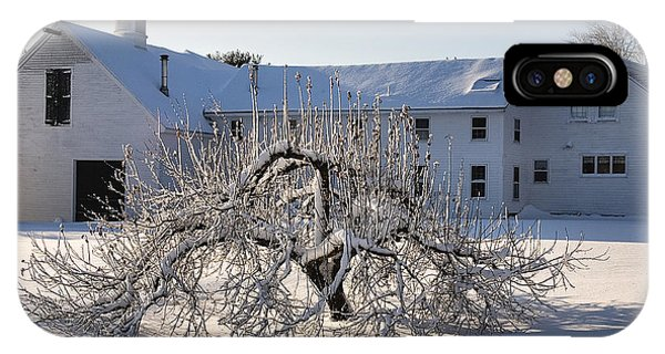 Winter Sculpture IPhone Case