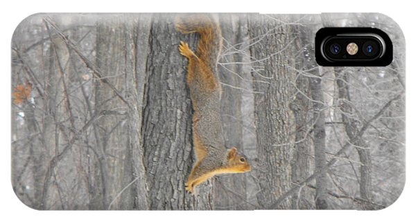 Winter Squirrel IPhone Case