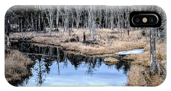 iPhone Case - Winter Stream Adirondack's by George Fredericks