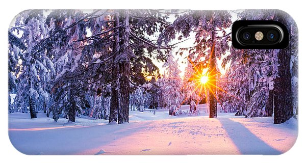 Winter Sunset Through Trees IPhone Case