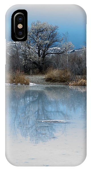 IPhone Case featuring the photograph Winter Taking Hold by Fran Riley