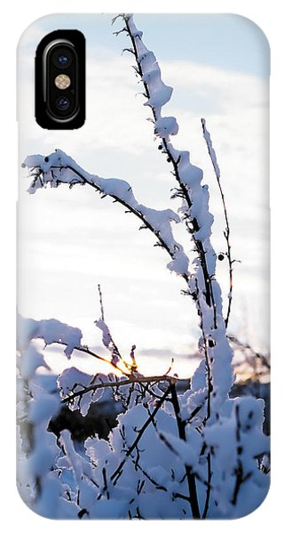 Winter IPhone Case