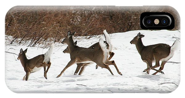 White Tailed Deer Winter Travel IPhone Case