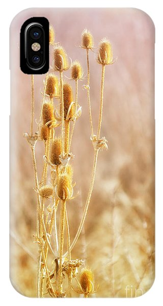Winter Treasure IPhone Case