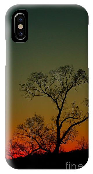 Winter Tree At Sunset IPhone Case
