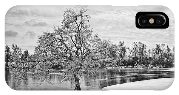 Winter Tree At The Park  B/w IPhone Case