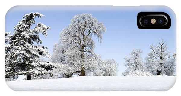 Winter Tree Line IPhone Case