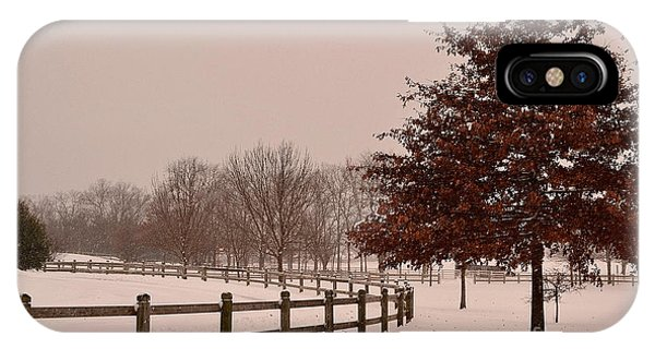 Winter Trees In Park IPhone Case