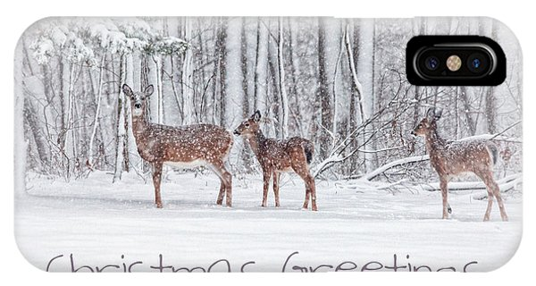 White Tailed Deer iPhone Case - Winter Visits Card by Karol Livote