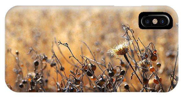 Winter Weeds IPhone Case