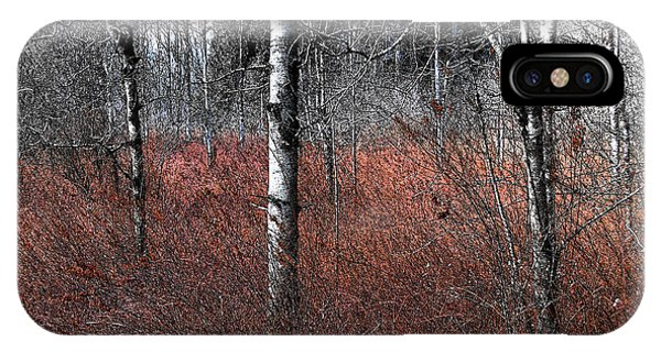 IPhone Case featuring the photograph Winter Wetland I by Jani Freimann