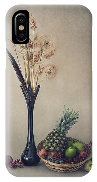 Fall Flowers iPhone Case - Winter With Fruits by Dimitar Lazarov -