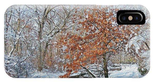 Winter Wonder Land IPhone Case