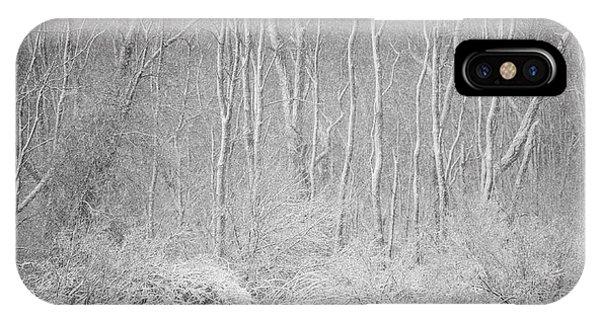 Winter Wood 2013 IPhone Case