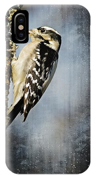 Winter Woodpecker IPhone Case