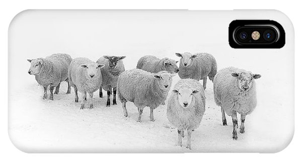 Sheep iPhone Case - Winter Woollies by Janet Burdon