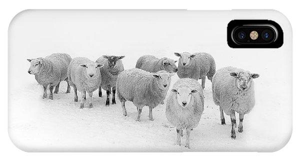 Winter iPhone Case - Winter Woollies by Janet Burdon