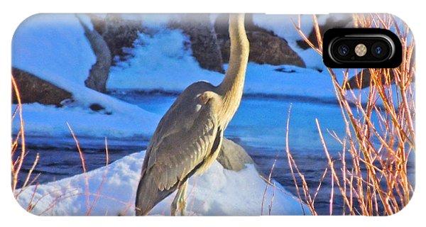 Wintering Walker River Heron IPhone Case