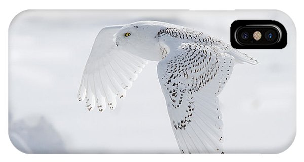 Winters Angel IPhone Case