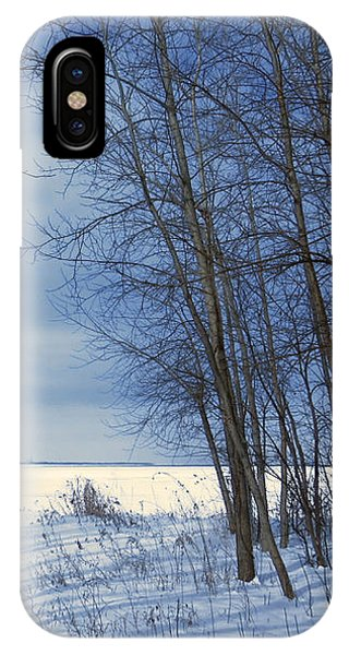 Wintertime At Sheldon Marsh IPhone Case