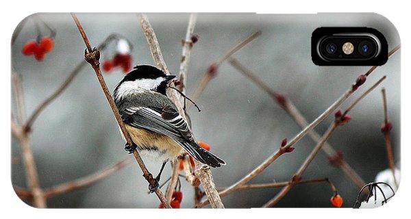 Wintertime Chickadee IPhone Case