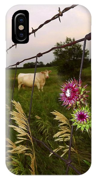 Wisconsin Evening IPhone Case